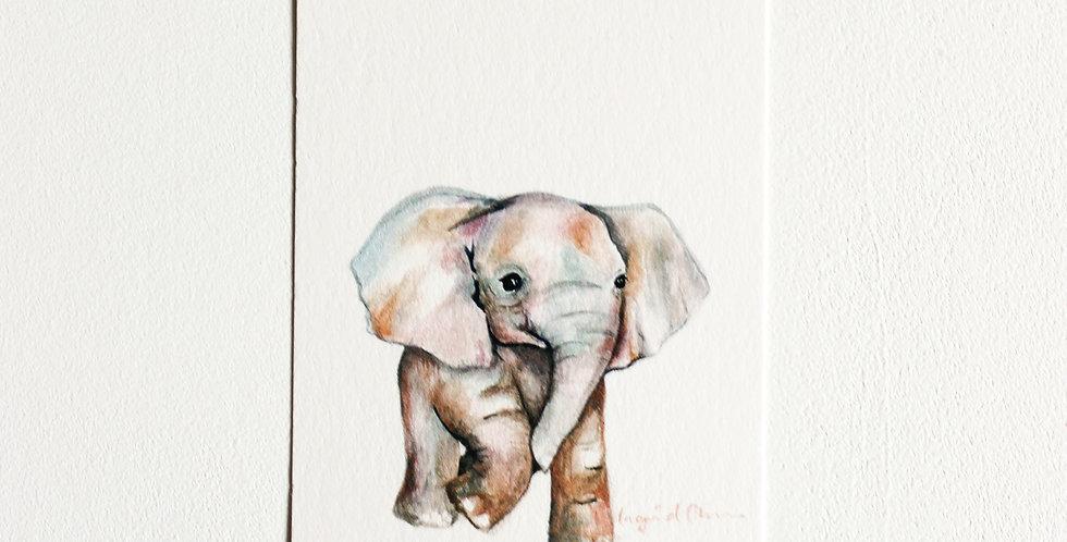 Gavelapp: Elefant