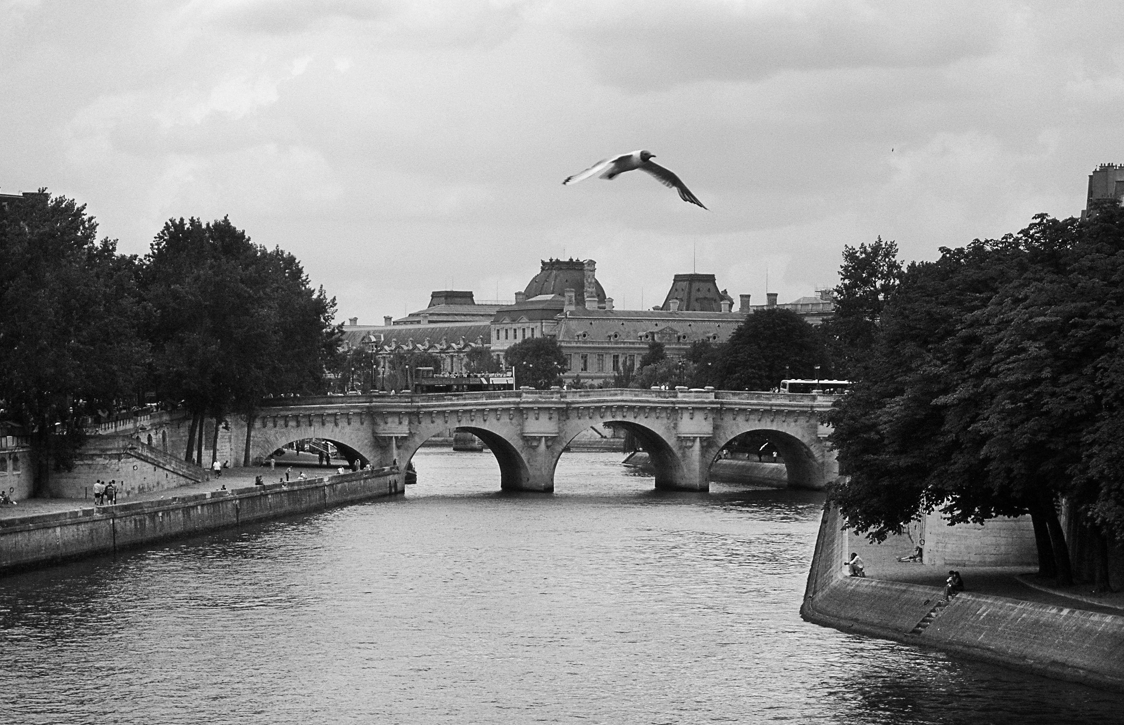 PARIS bridge action.jpg