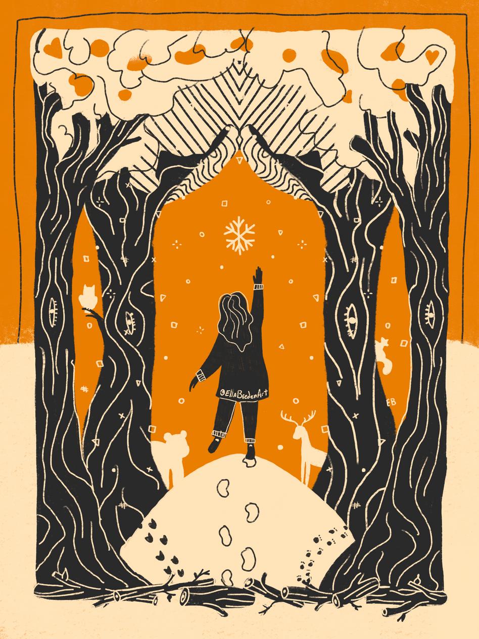 Wintertime Wandering