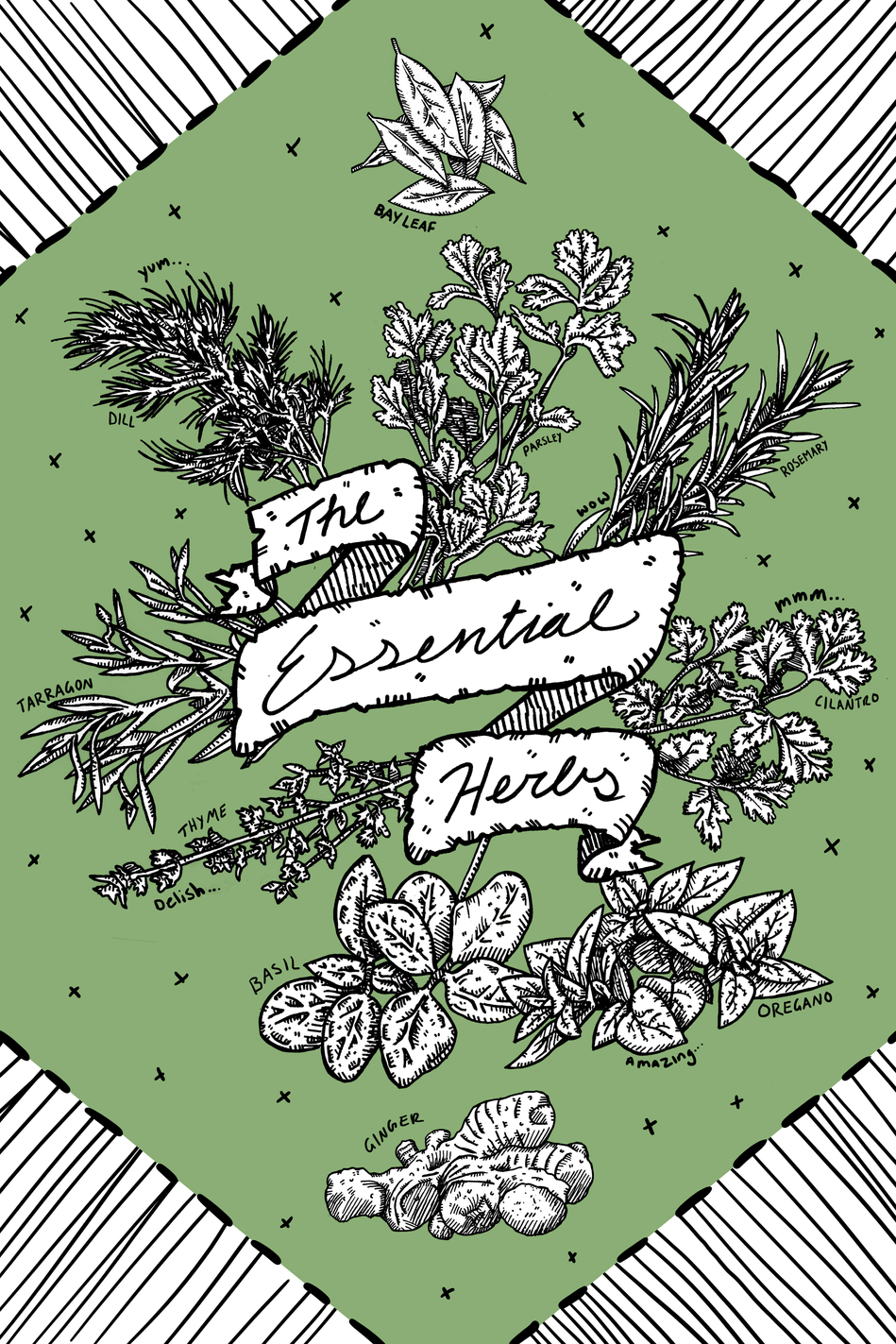 The Essential Herbs