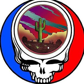 Steely Cactus.jpg