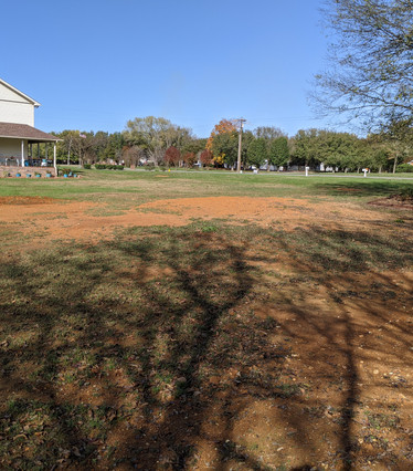 More before pictures showing low spot and bare spots of grass that weren't growing due to standing water.