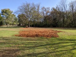Before picture of low spot where customer tried to previously dump dirt.