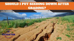 Should I put Down Seeding After Grading my Yard?