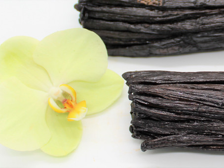 The Benefits of Curing Vanilla the Traditional Way
