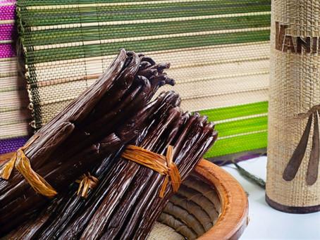 The Fascinating History of Madagascar Vanilla Beans