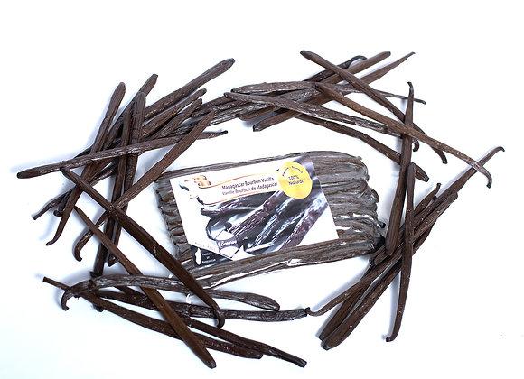 Large Premium Madagascar Vanilla Beans – High Caliber