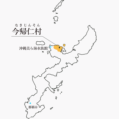 マップ今帰仁村.png