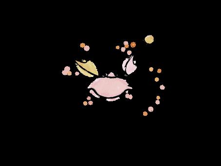 Ti krab Soleil