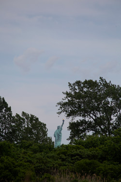 Can't See the Liberty for the Trees
