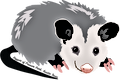 pepperthepossum.png