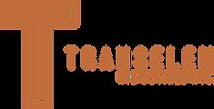 thumbnail_Transelem_logo-2019_edited.png