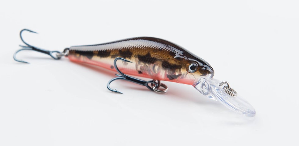WS LURE 4g 8638-55