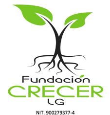 "Fundación Crecer LG ""Proyecto Música"""