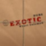 ExoticRawJointpaper.png