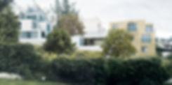 HLA-VIZ01.jpg