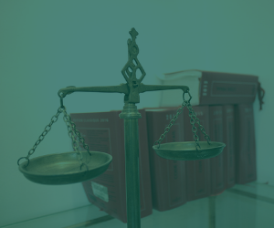 Informativo Licitações e Contratos nº 407