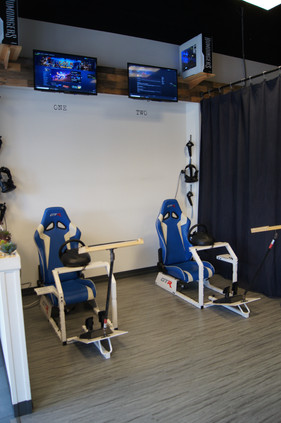 Virtual Racing and Roller Coasters