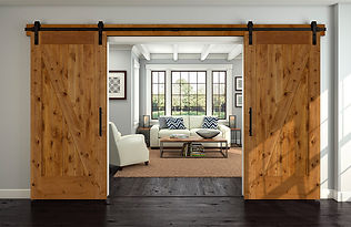 interior-barn-door-80812.jpg