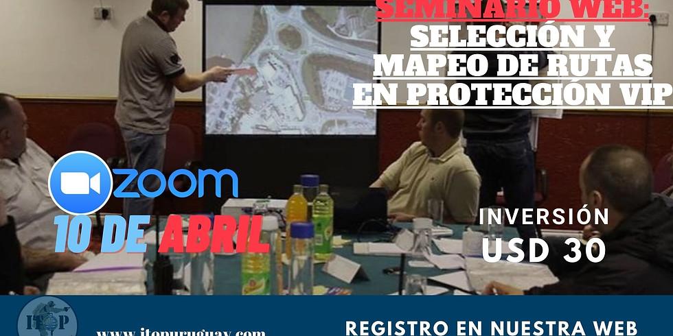 WEBINAR  : SELECCIÓN Y MAPEO DE RUTAS EN PROTECCIÓN VIP