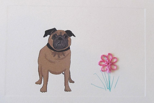 DG031 - BROWN PUG