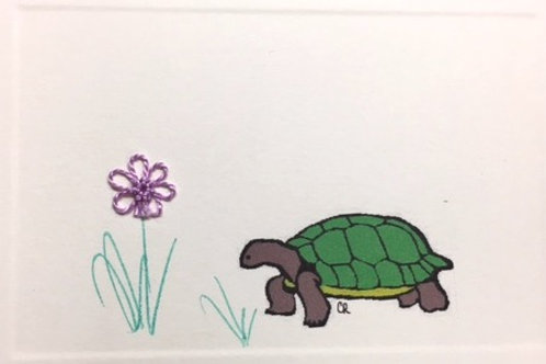 AN006 - TURTLE