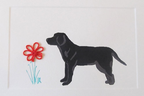 DG042 - BLACK LAB
