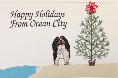 HY097 - DOG TREE BEACH