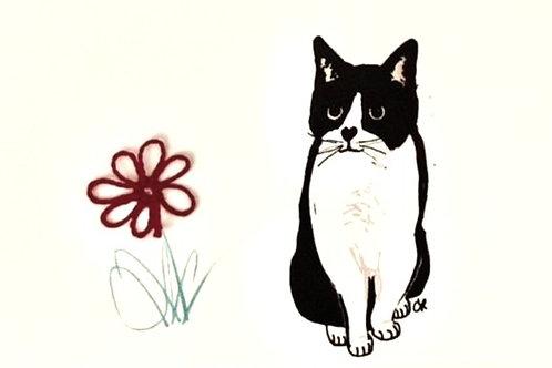 CT023 - GINNY'S CAT SKIP