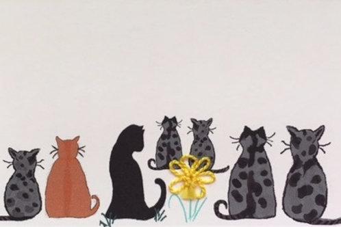 CT011 - SEVEN CATS