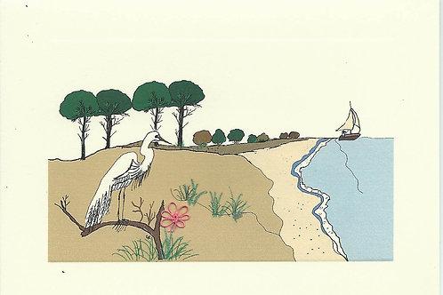 MS029 - EGRET BEACH