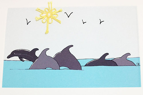 MS043 - DOLPHINS