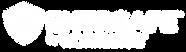 EntrSafe-logo-1.png
