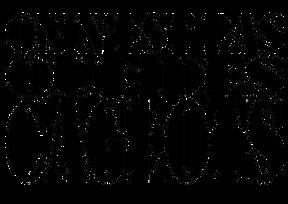 logo écrit (1).png