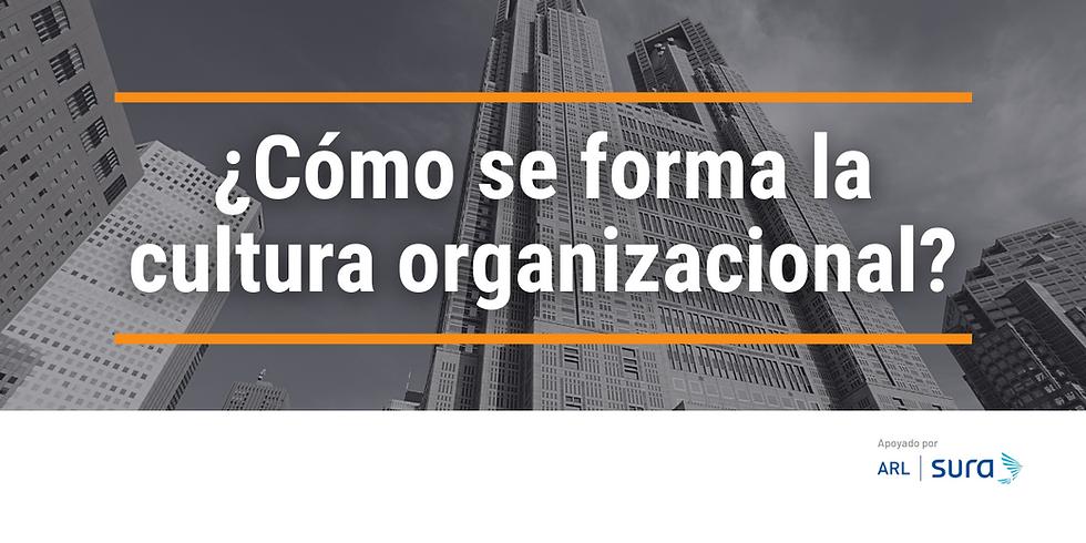 ¿Cómo se forma la cultura organizacional?