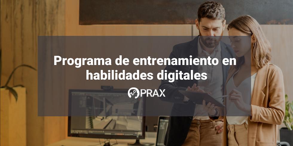 Programa de entrenamiento en habilidades digitales