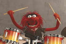Animal on Drums
