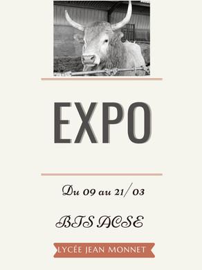 Exposition Des BTS ACSE 1
