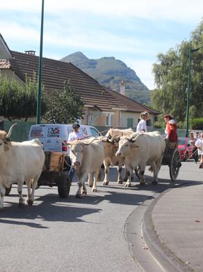 Fête de la vache et de la brebis lourdaises les 2 et 3 octobre 2021 à LOURDES