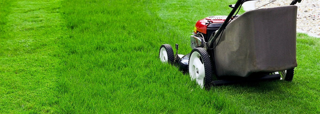 Lawn Care / Landscaping