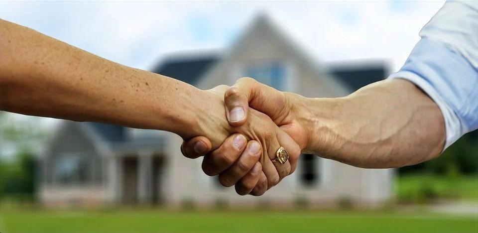 Real Estate / Developer