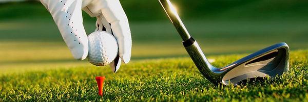 20140626_majeed_drs_-golf1.jpg