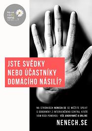 flyer, domestic violence,