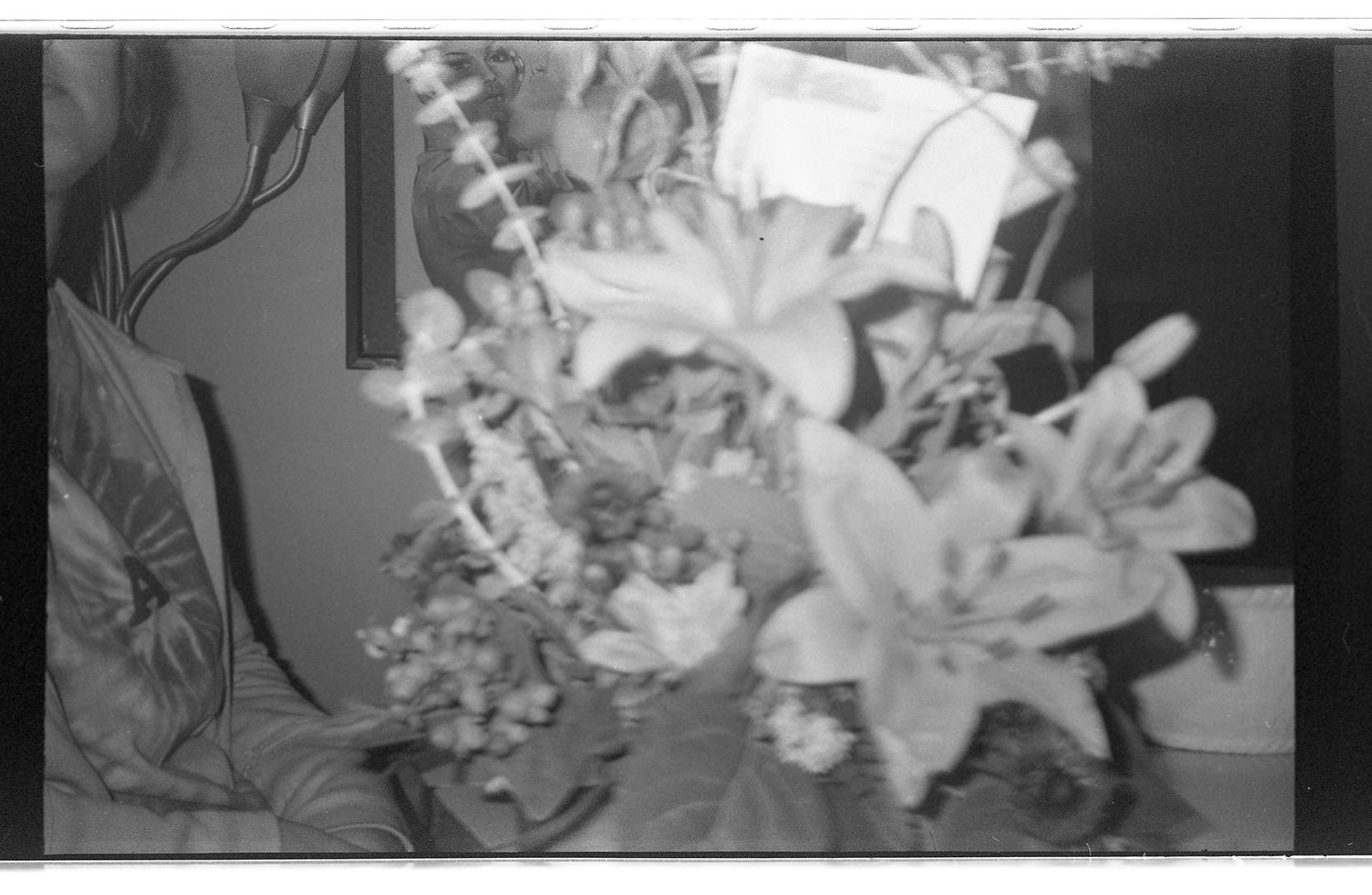 Amy Pence Brown 1 009.jpg