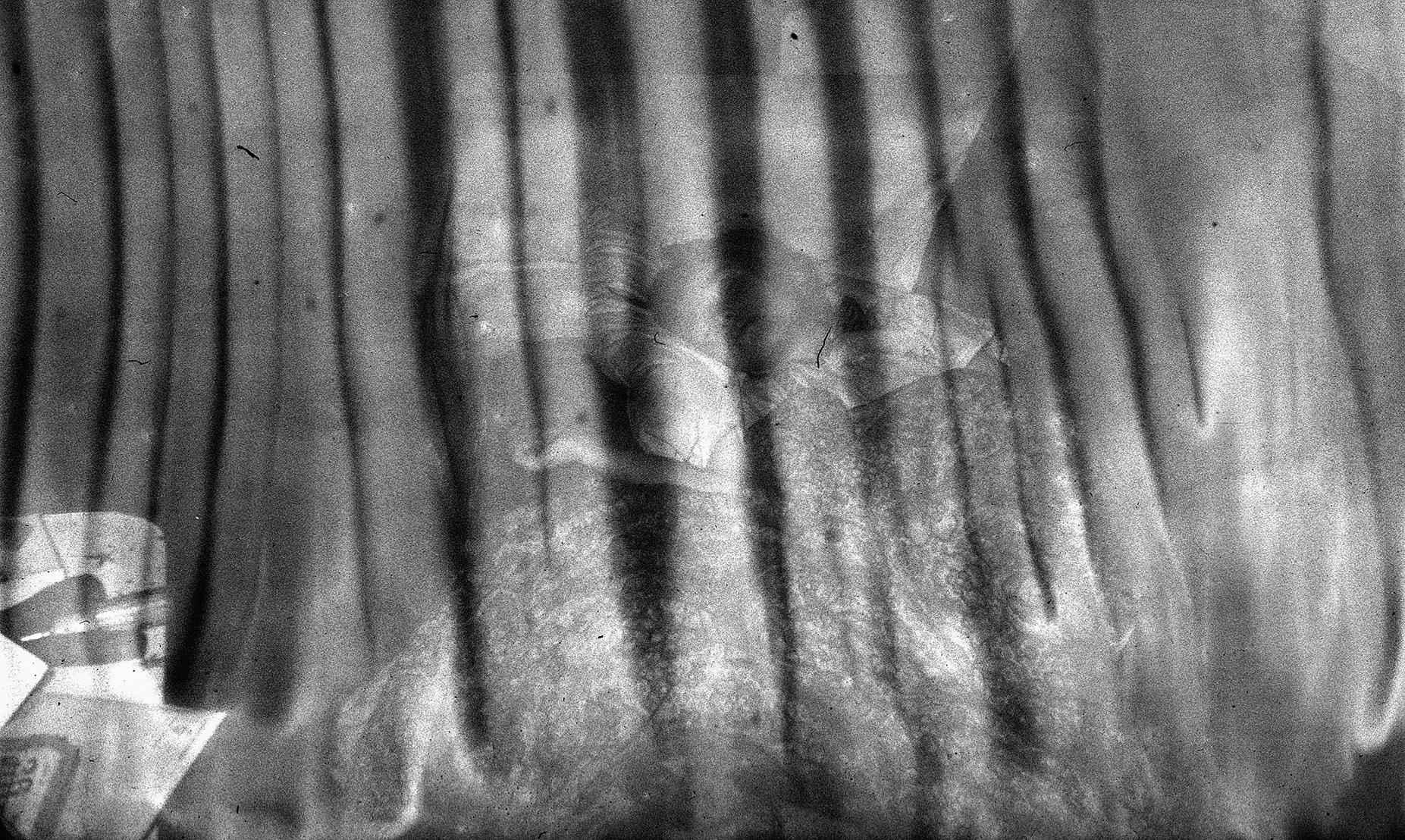 Paul Bundle 18 Roll 1 006.jpg