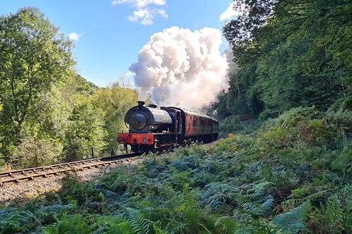 Dean Forest Railway Incl. Cream Tea