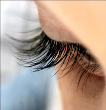 eyelash1.jpg