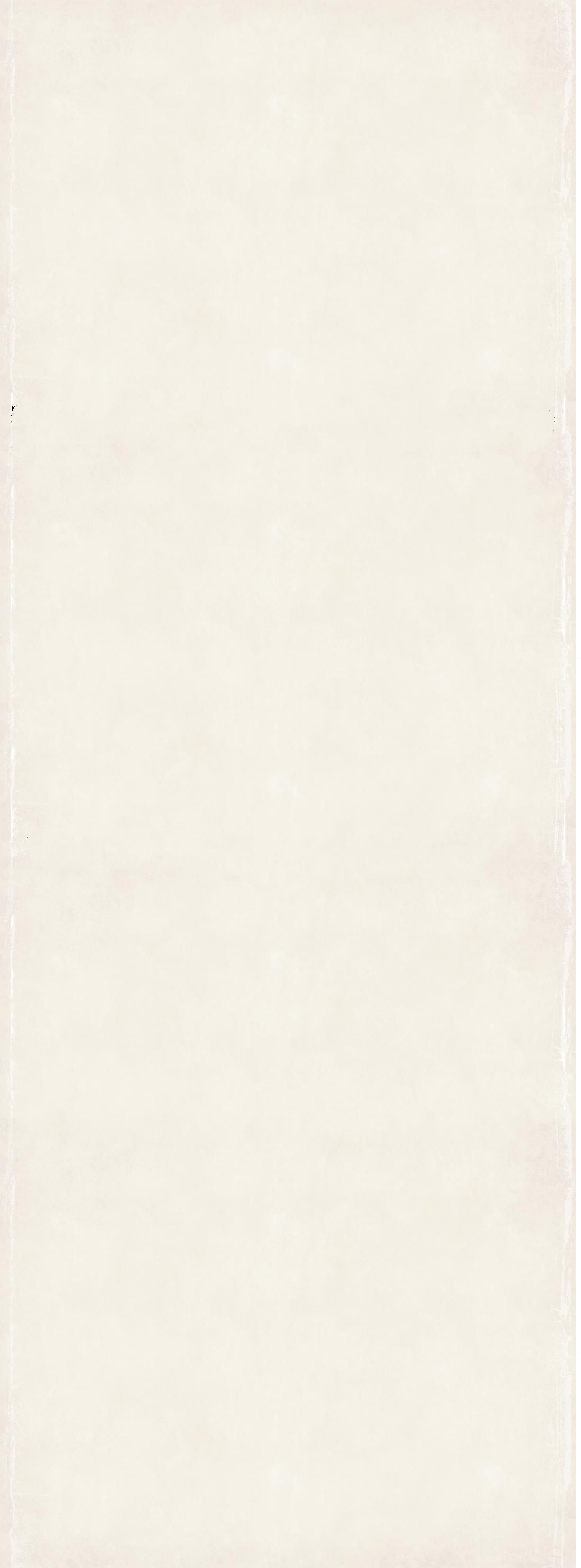 Grungeframe_white_03_longer.png