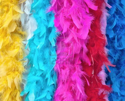 11760485-de-varios-colores-boas-de-plumas-para-disfraz.jpg
