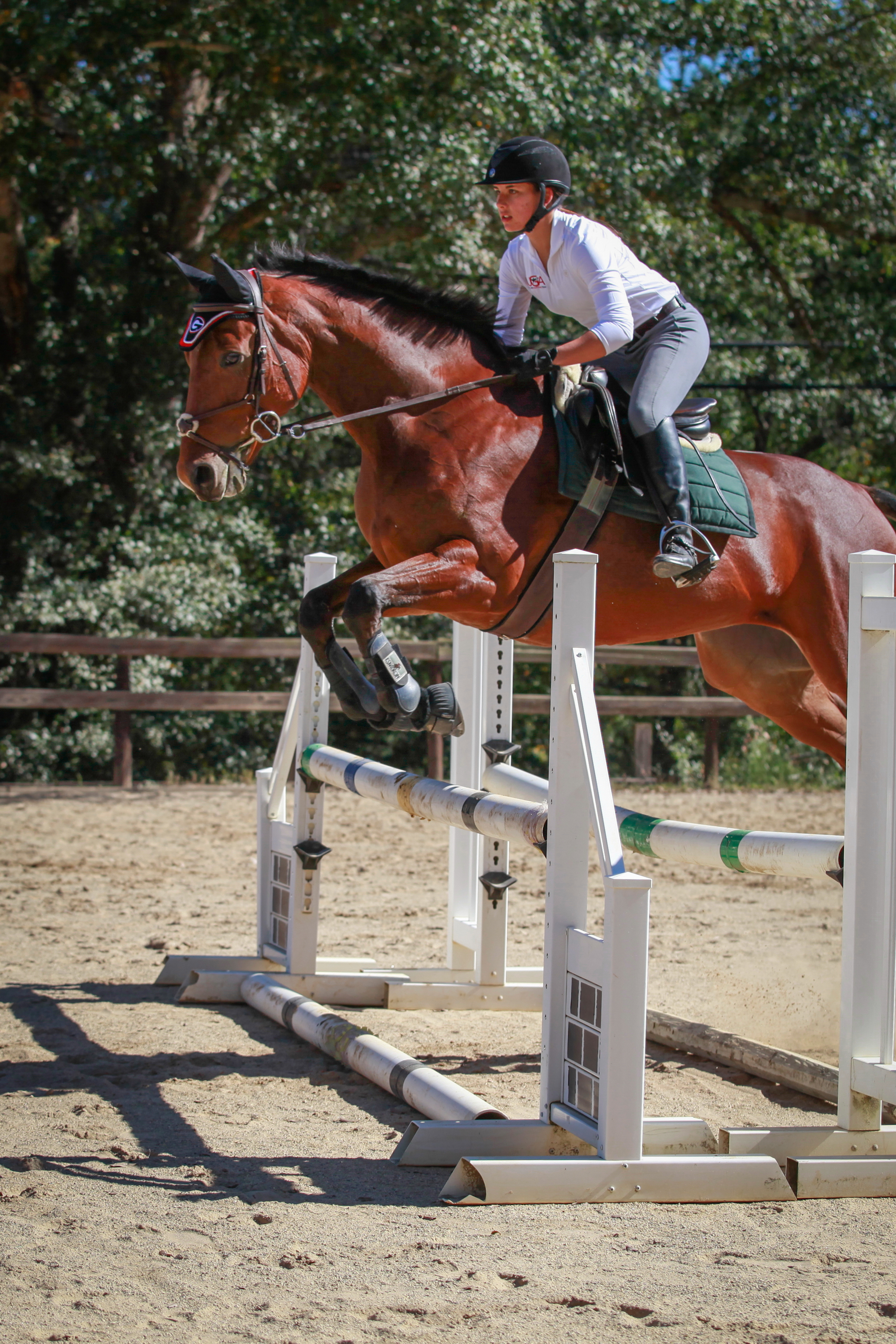 eventing.clinic1_45